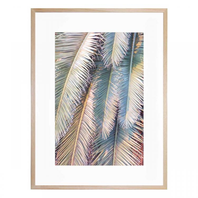 Sunset Palm - Print