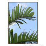 Tropical Close Up - Print