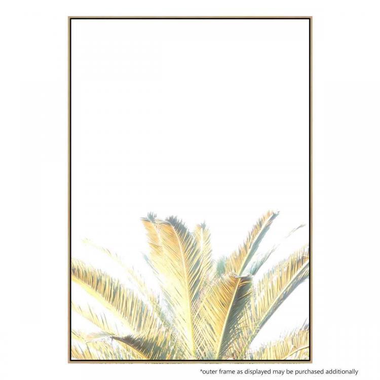 Washout Palm - Print