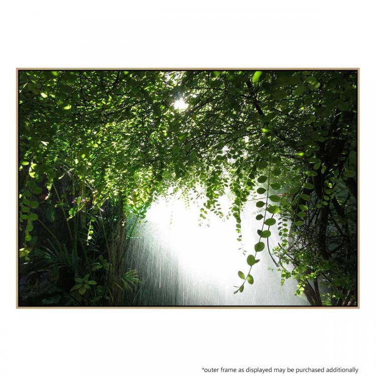 Canopy Verdis -  Print