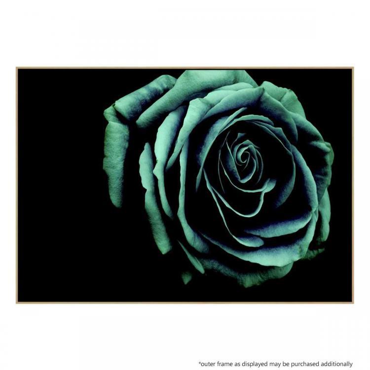 Rosa Verde - Print