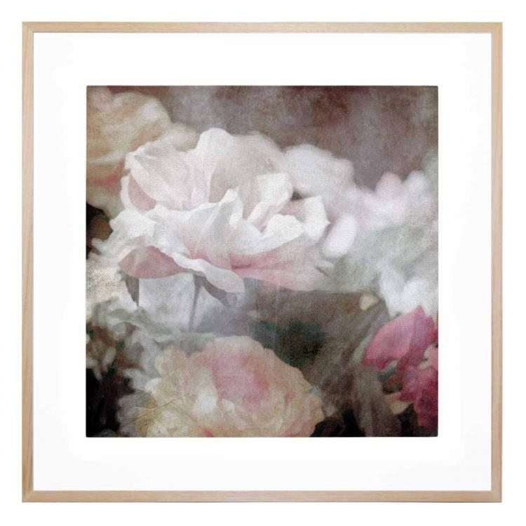 Astoria Bloom