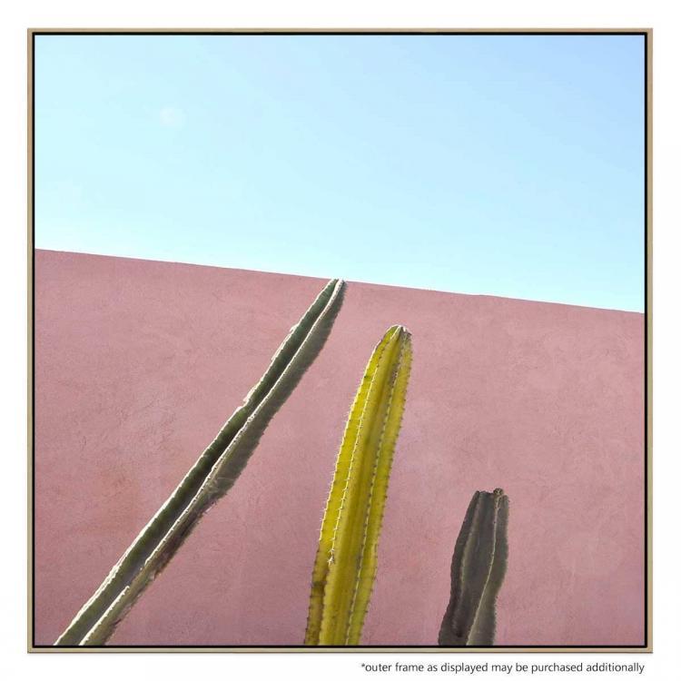 Cactus Trio - Print