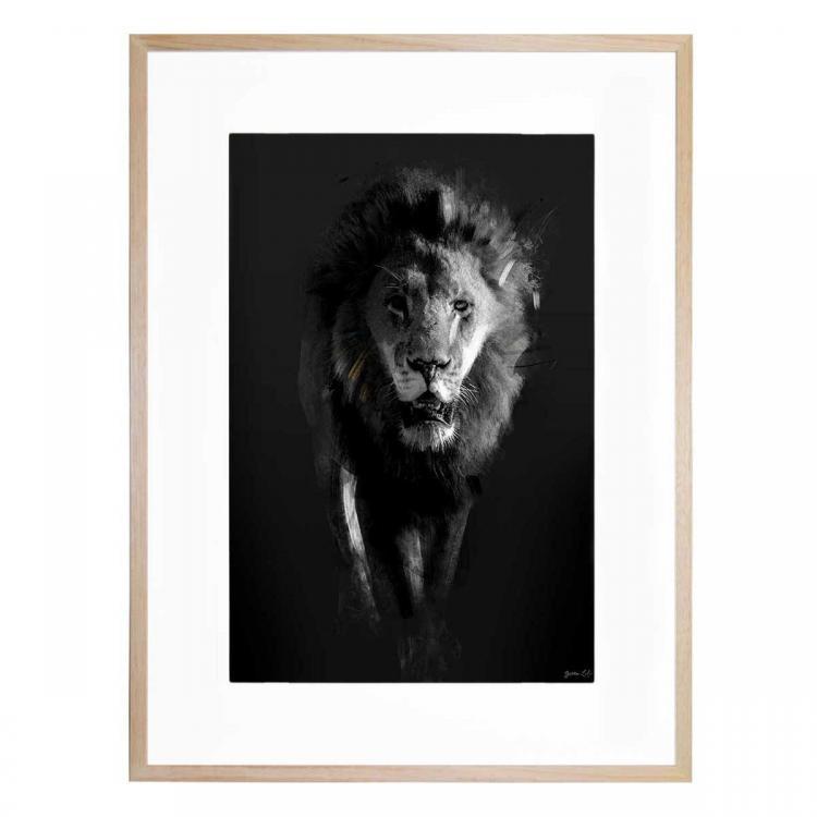 Lion Dark - Print
