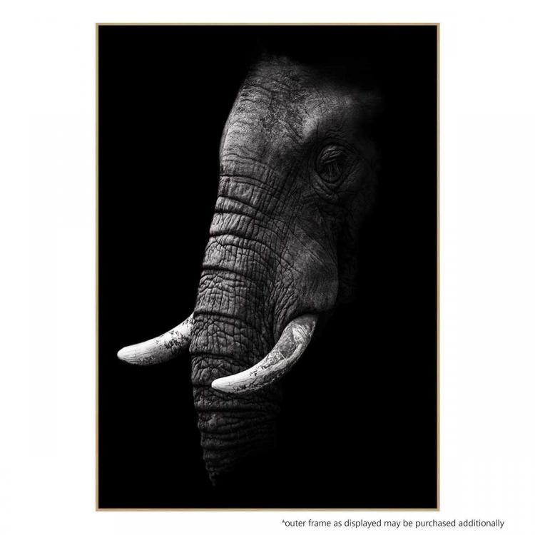 Mastodon 2 - Print
