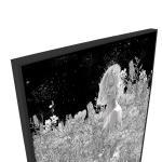 Midnight - Print