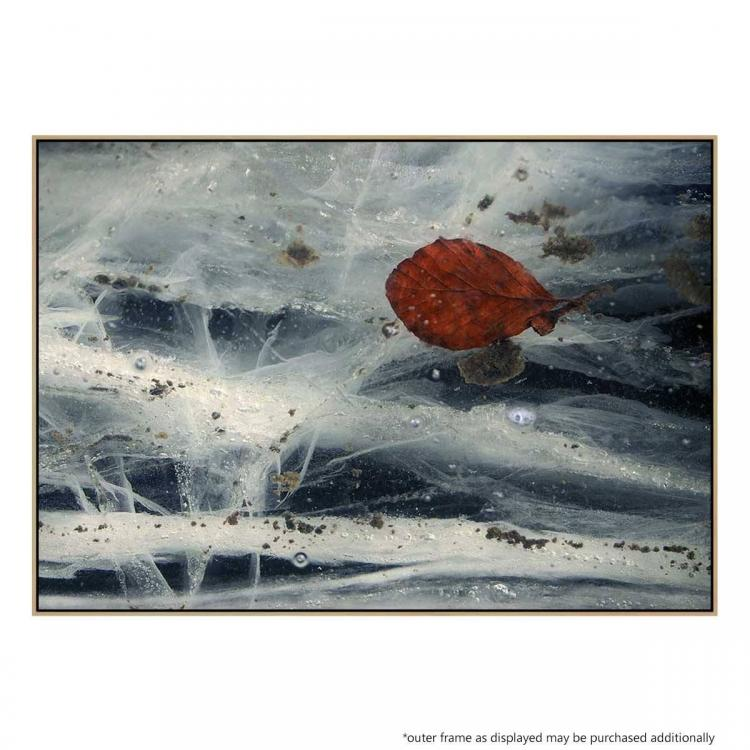 Winter Leaves - Print