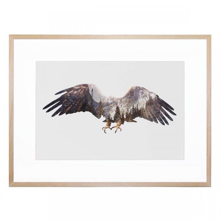 Arctic Eagle