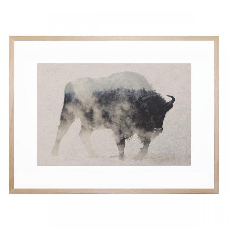 Bison In The Fog - Print