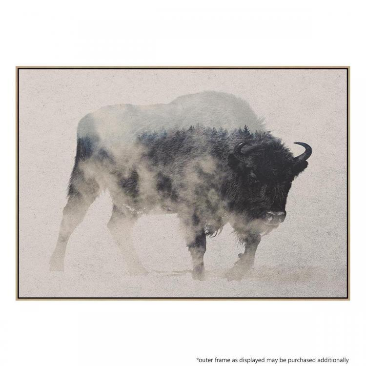 Bison In The Fog