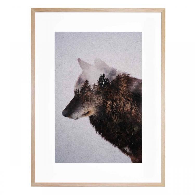 Big Wolf - Print