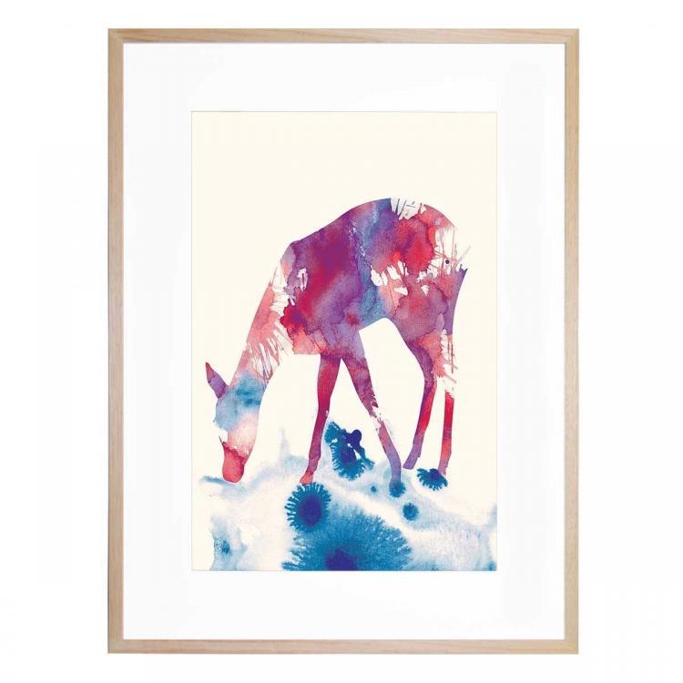 Fawn - Print