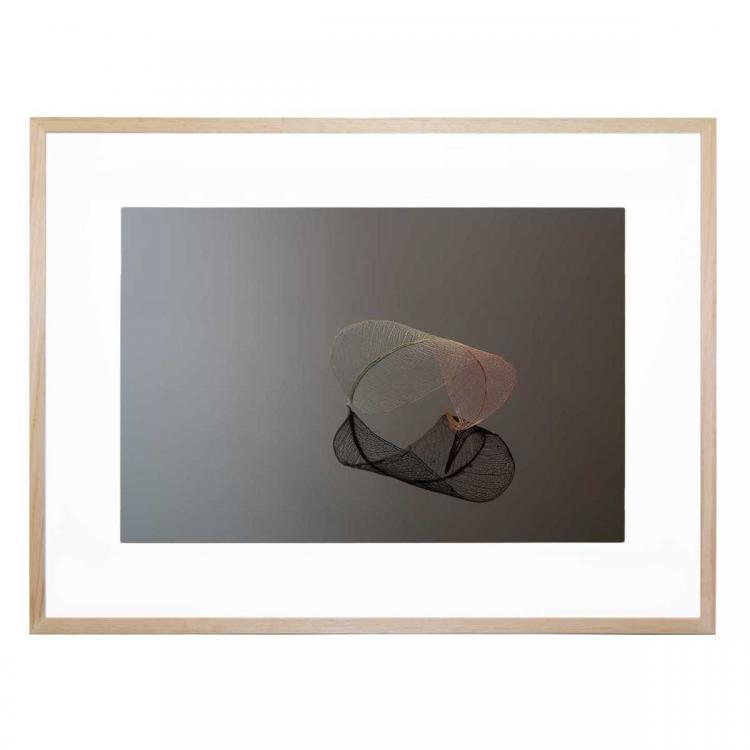 Delicately Poised - Print