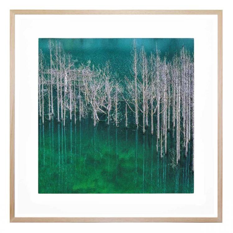 Forest Vert - Print
