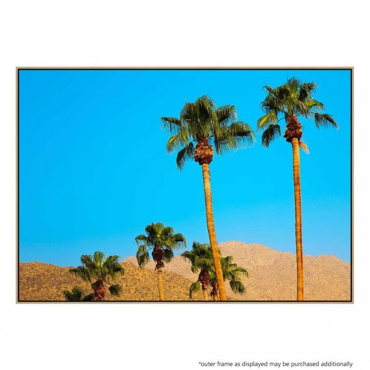 Desert Palm 2 - Print