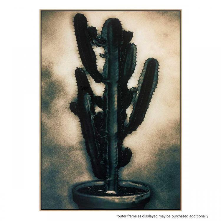 Cactus 3 - Print