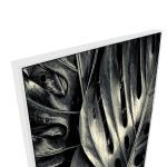 Epiphany - Print