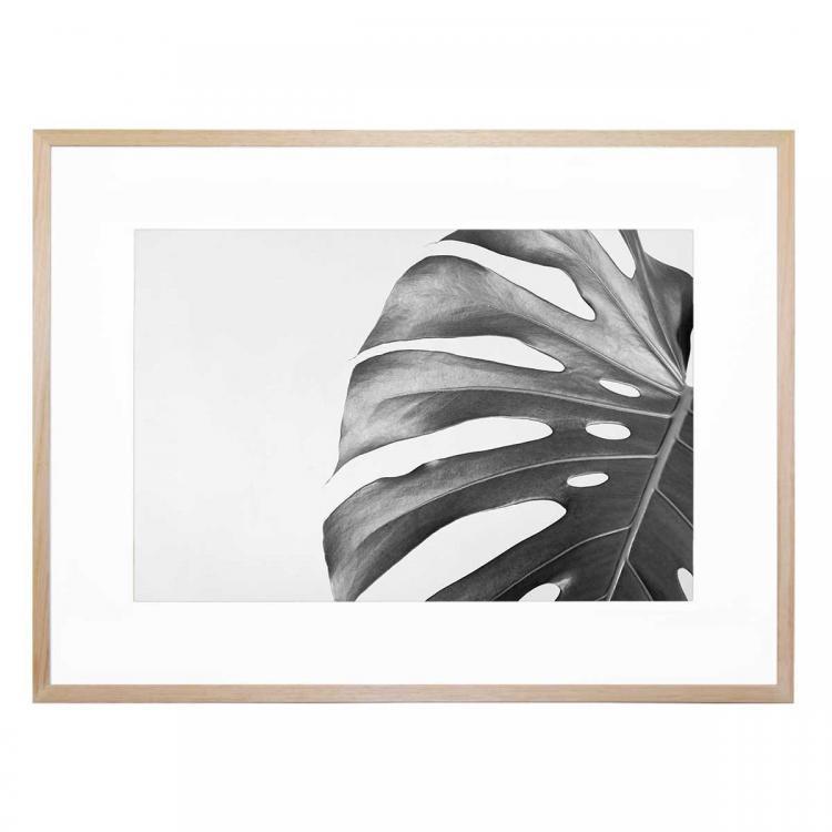 Mono Foglia - Print