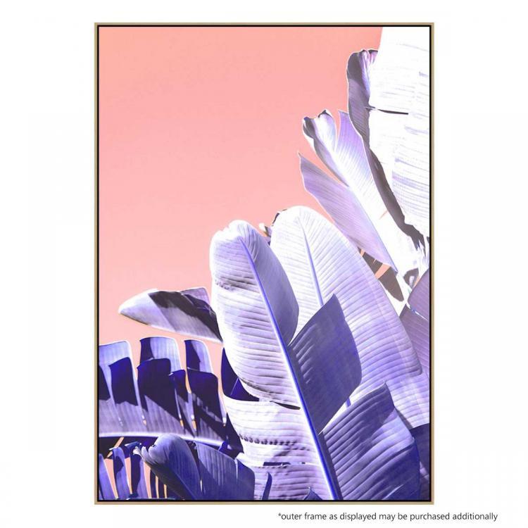 Botanica Blush - Print
