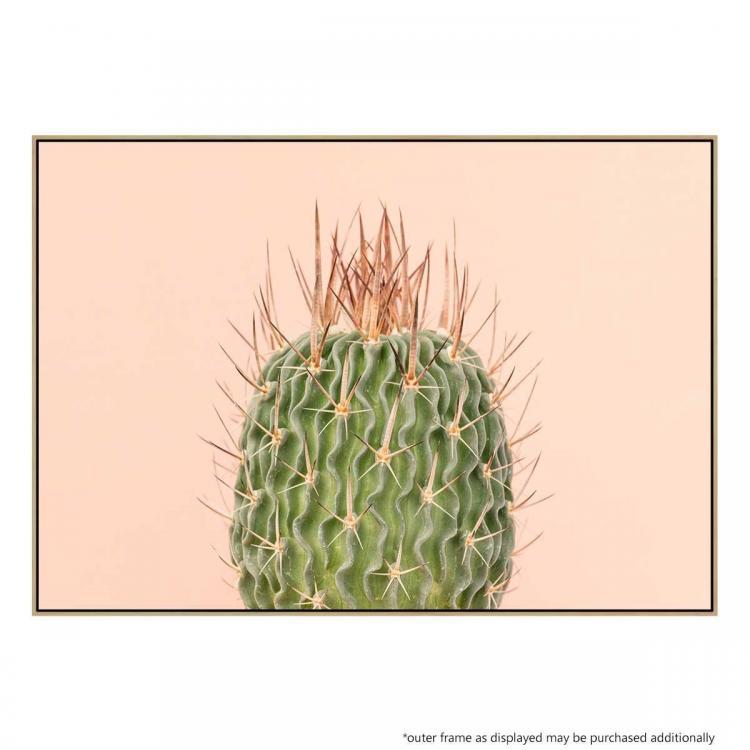 Arizona Spring - Print