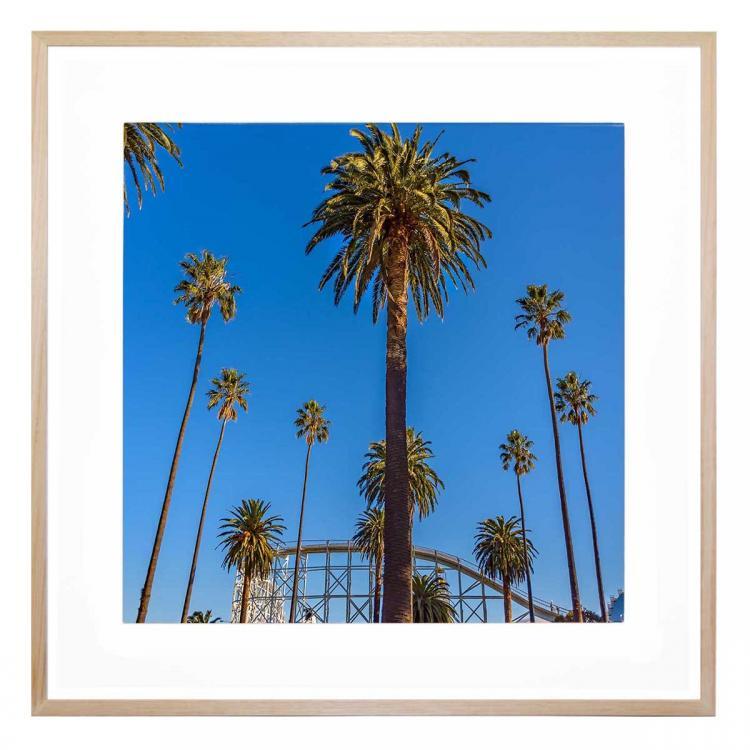 St Kilda Palms - Print