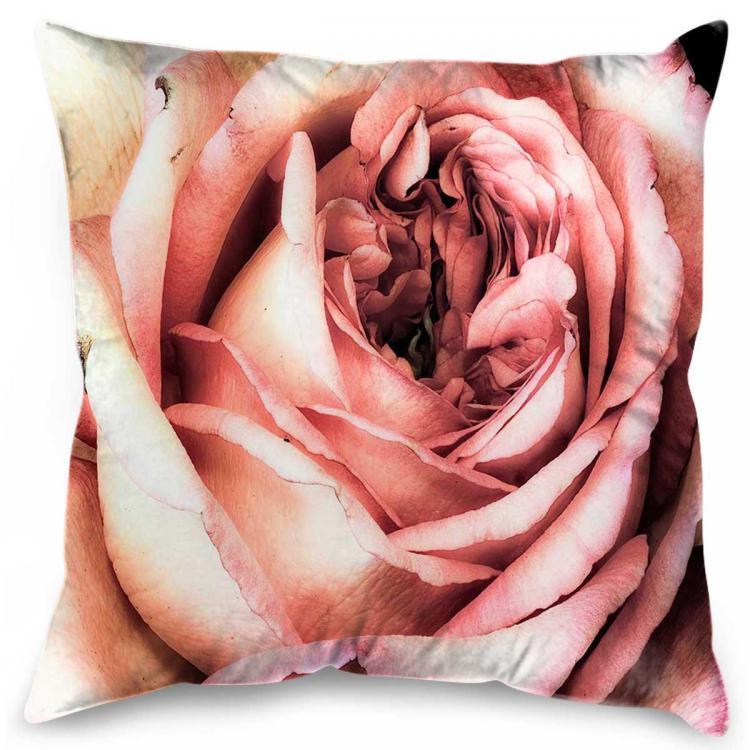 Rosato Bloom - Print