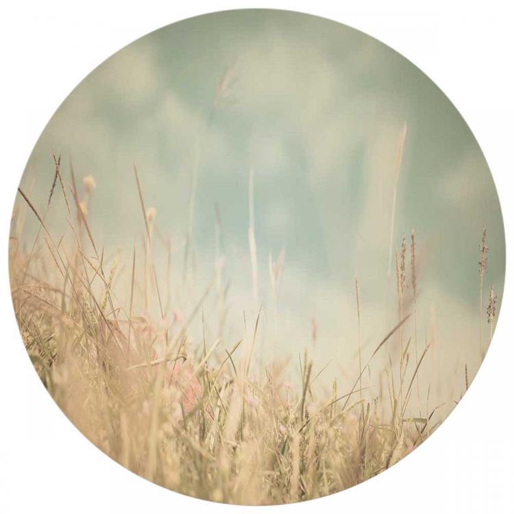Willow Grass - Print