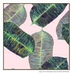 Banana Leaf 2 - Print