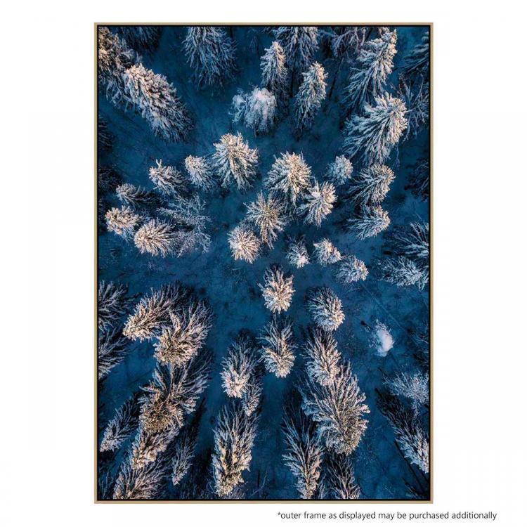 Florist Burst - Print