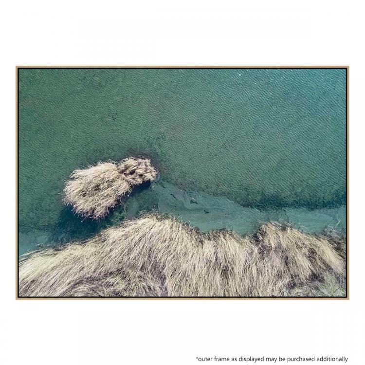 Frozen Grass - Print