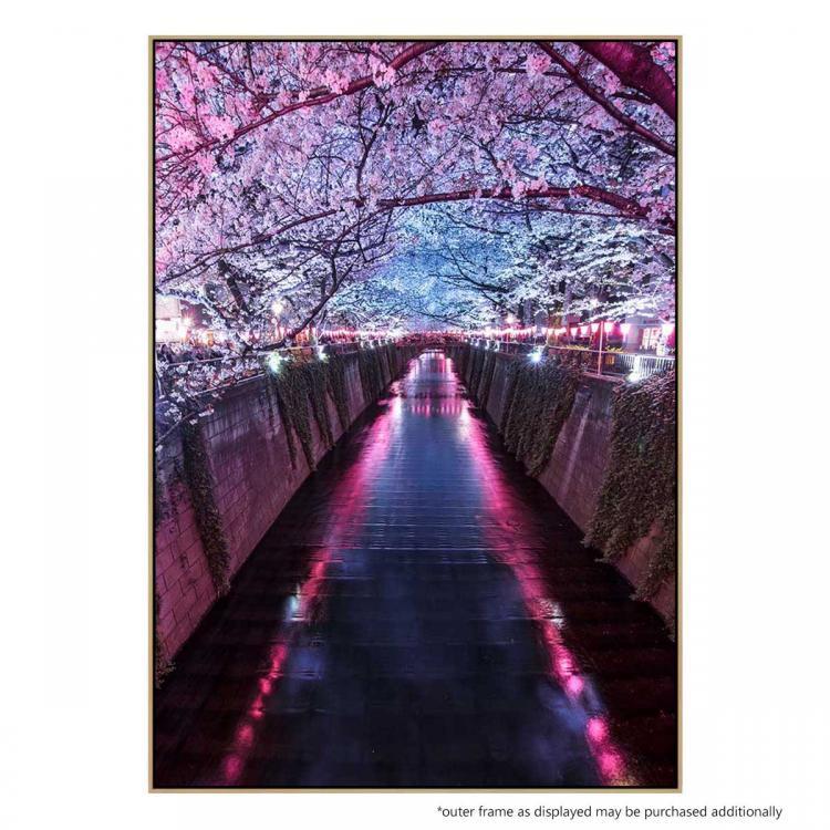 Sakura Season - Print