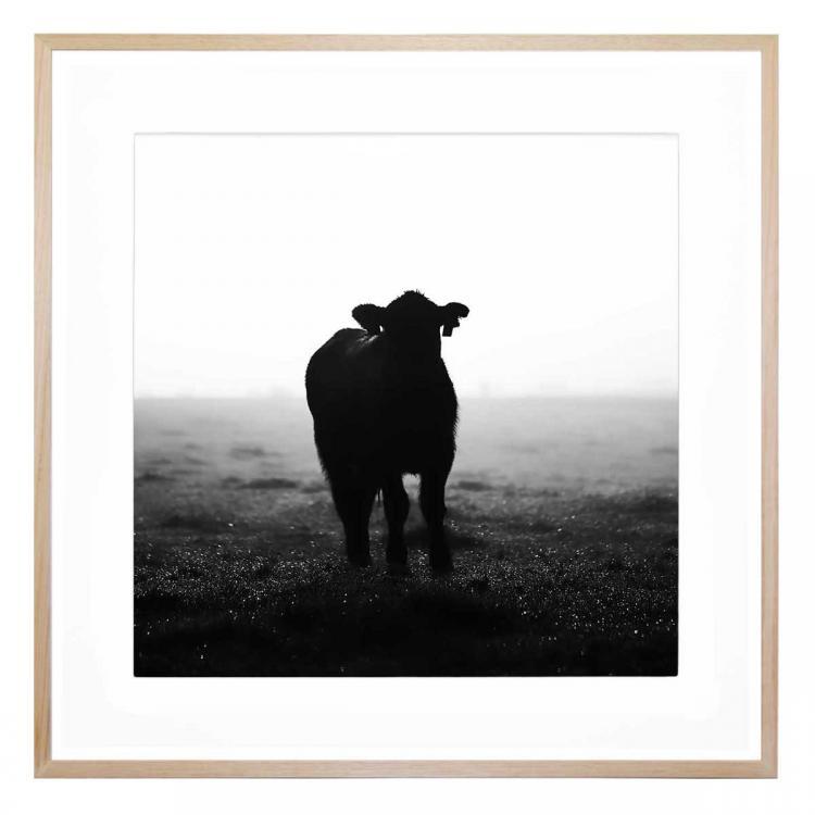 Bessie - Print