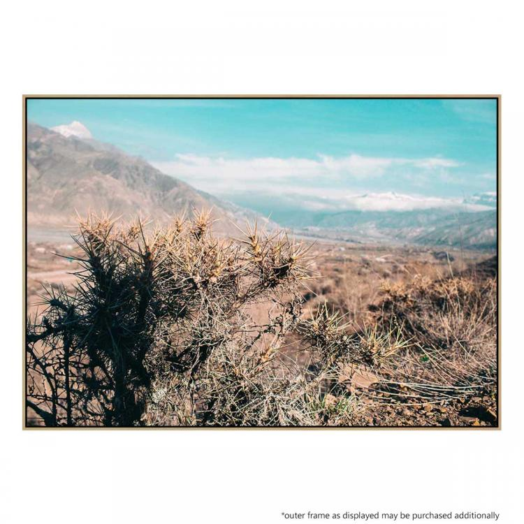 Arizona Plains - Print