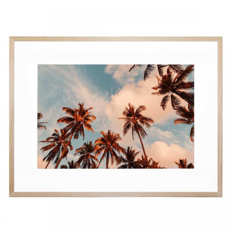 Even More Palm Trees - Print