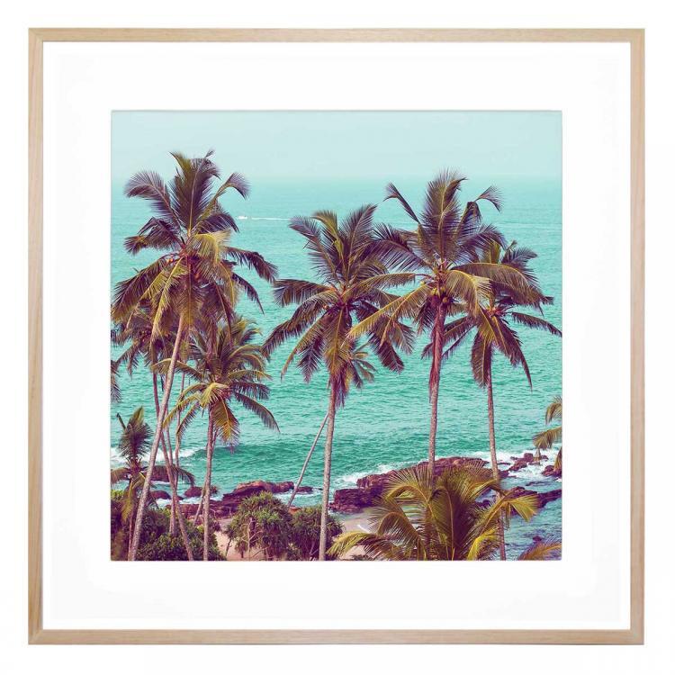 More Palm Trees - Print