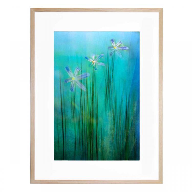 Three Flowers - Print