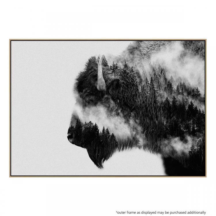 Bison BW - Print