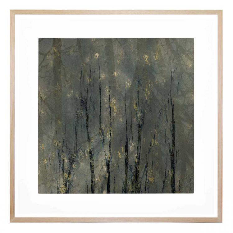 Forest Fog - Print