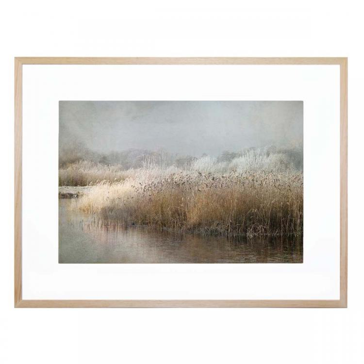 Reeds On Water - Print