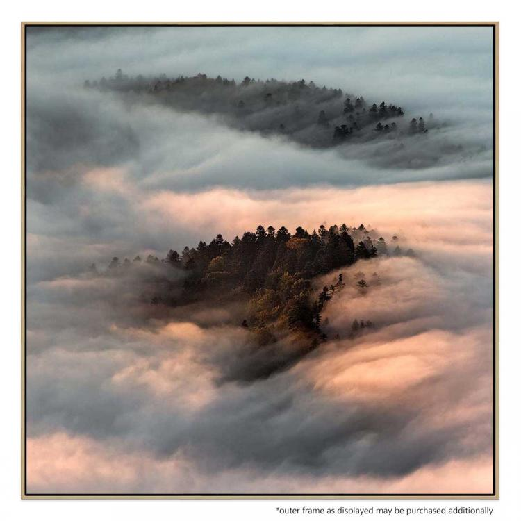 Trees In The Clouds - Print