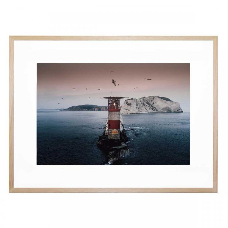 Lighthouse Birds - Print