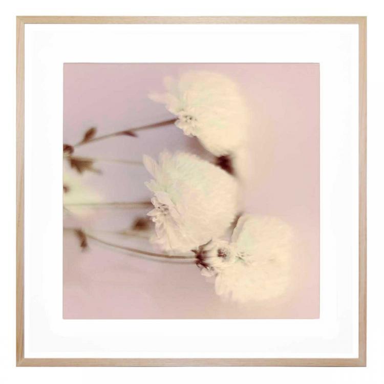 Pink - Print