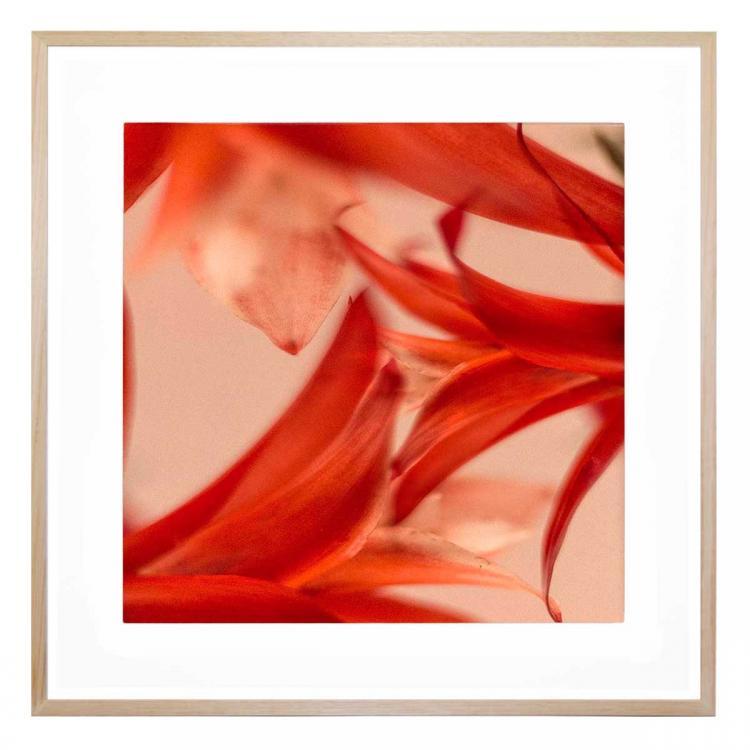 Rouge - Print