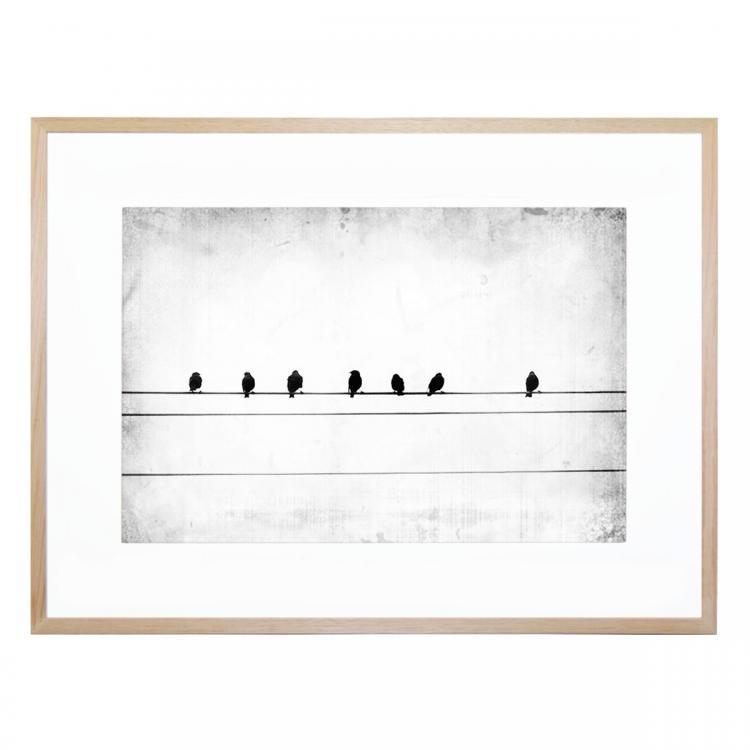 Sheet Music - Print