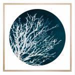 Night Coral - Print