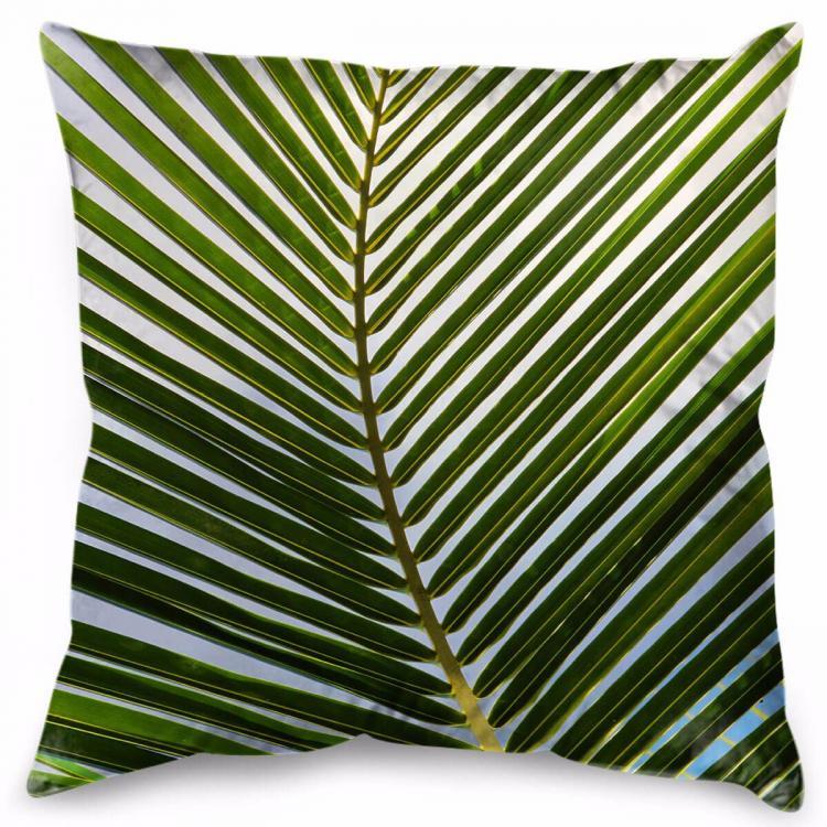 Cocos Grande - Print