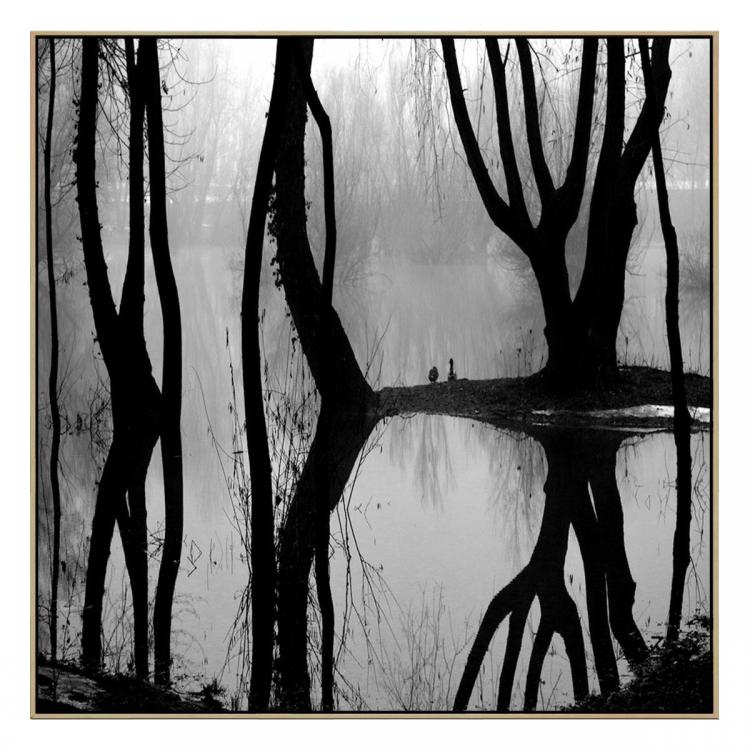 Reflections - Print