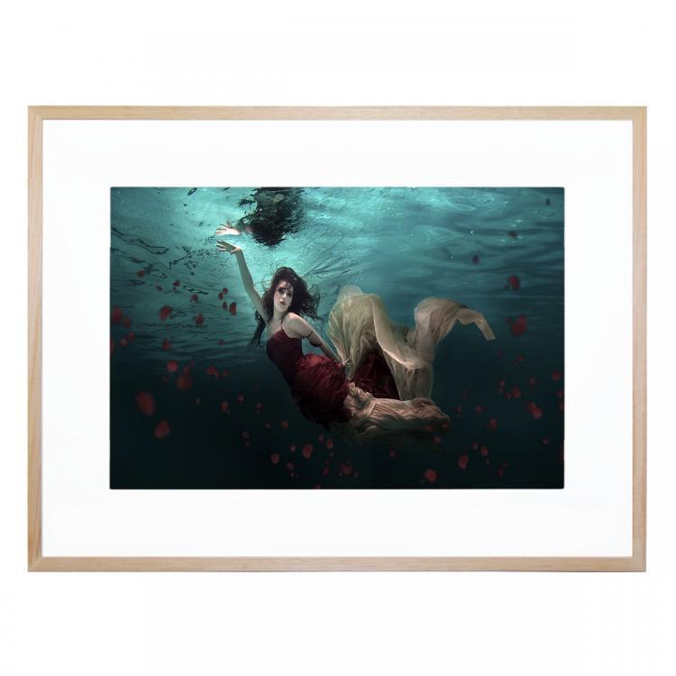 Ocean Of Roses - Print