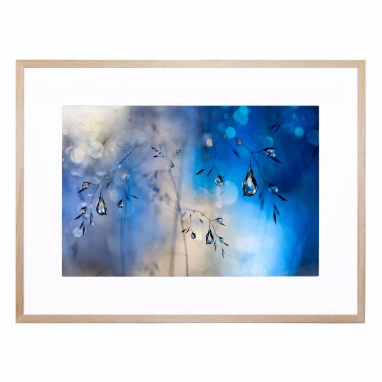 Blue Rain - Print