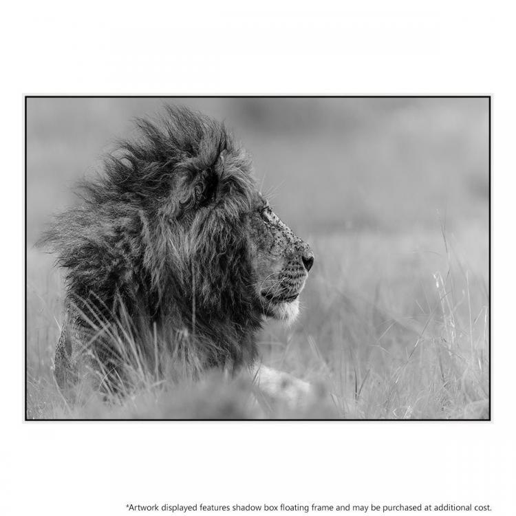 Lone King - Print